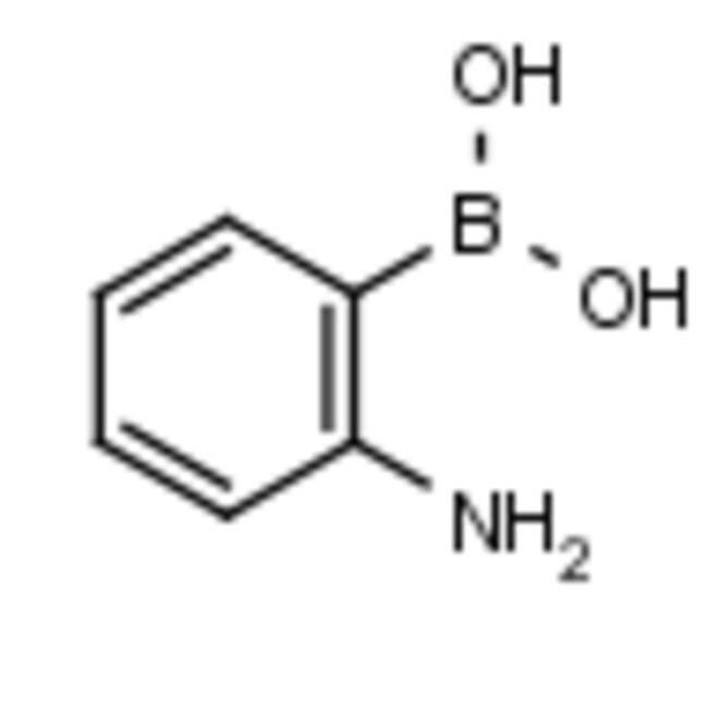 Frontier Scientific 25g 2-aminophenylboronic acid, 5570-18-3 MFCD01074645