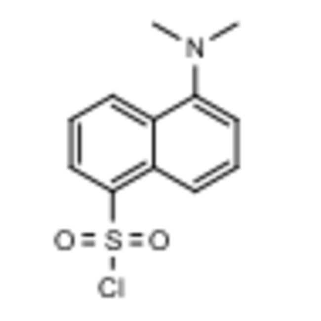 Frontier Scientific 25g 5-Dimethylamino-1-naphthalenesulfonyl chloride,