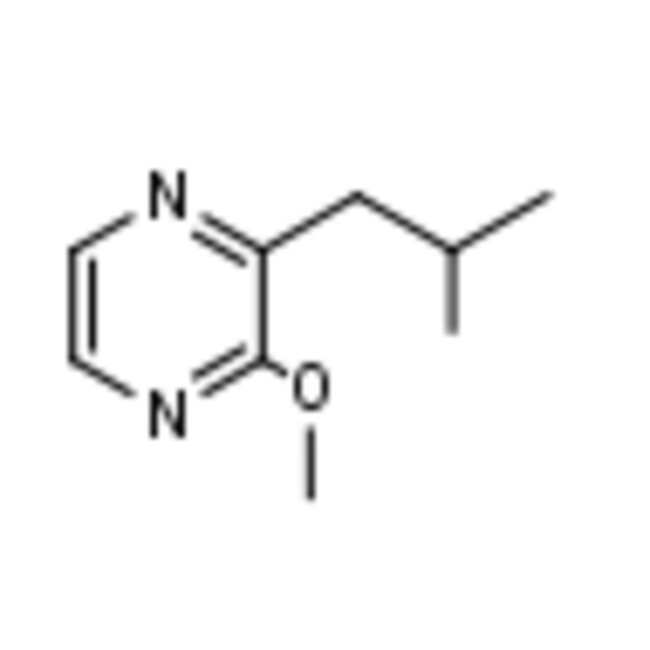 Frontier Scientific 1g 2-Isobutyl-3-methoxypyrazine, 99%, 24683-00-9 MFCD00006128