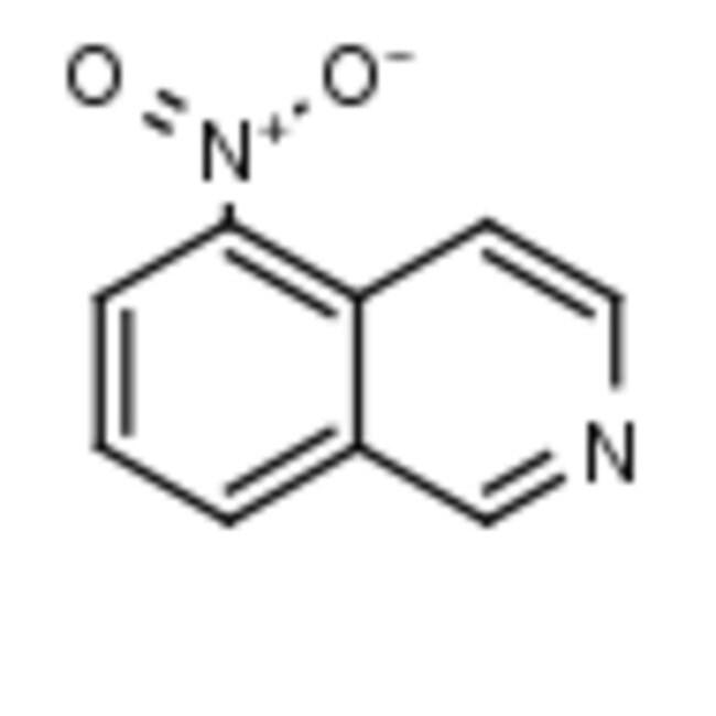 Frontier Scientific 5g 5-Nitroisoquinoline, 98%, 607-32-9 MFCD00006905