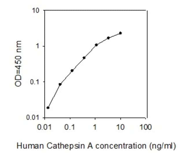 Raybiotech Inc Human Cathepsin A/CTSA ELISA Kit  HUMAN CATHEPSIN A/CTSA