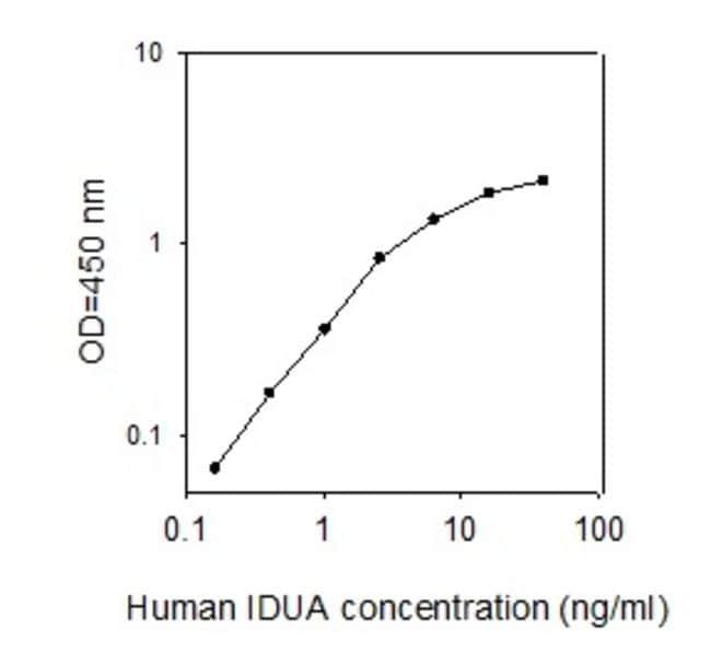 Raybiotech Inc Human IDUA ELISA Kit  HUMAN IDUA ELISA