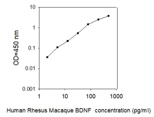 Raybiotech Inc Rhesus Monkey BDNF ELISA Kit  RHESUS MONKEY BDNF ELISA