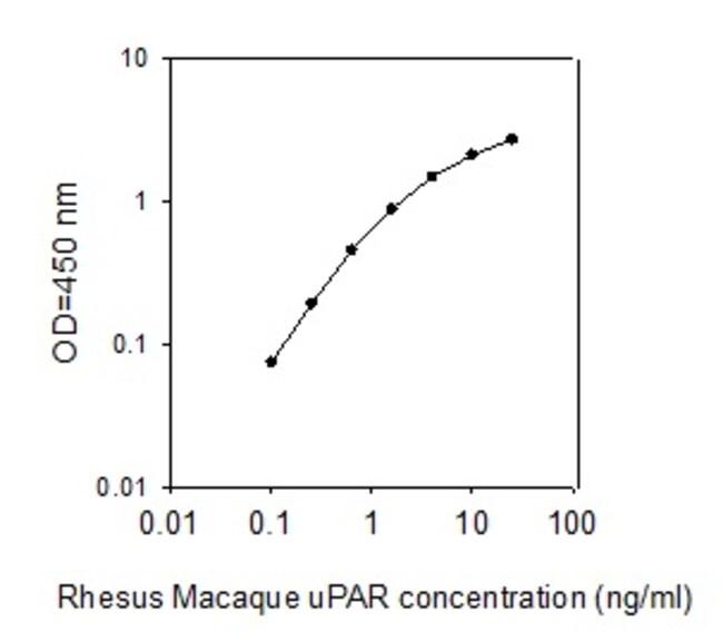 Raybiotech Inc Rhesus Macaque uPAR ELISA Kit  RHESUS MACAQUE UPAR ELISA