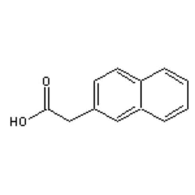 Accela Chembio Inc 2-NAPHTHALENEACETIC ACID 100G  2-NAPHTHALENEACETIC ACID
