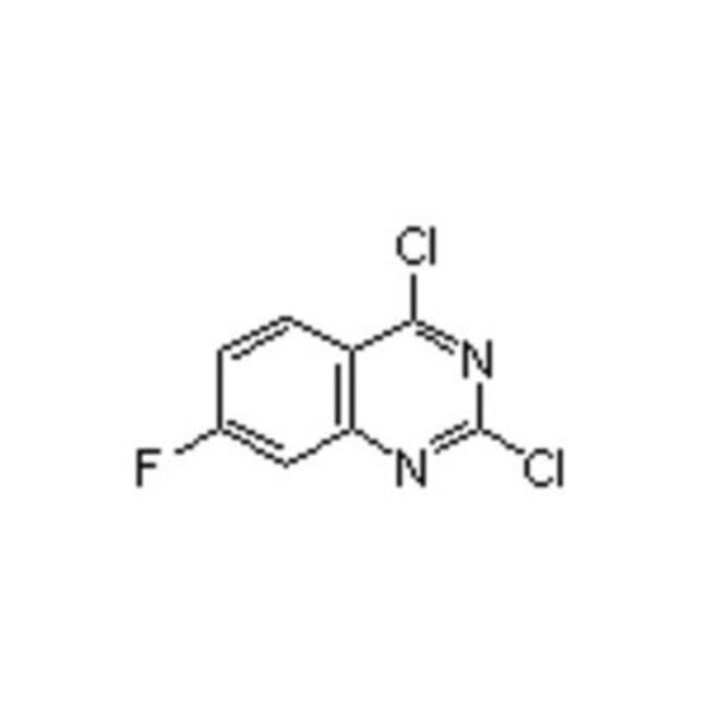 Accela Chembio Inc 2,4-DICHLORO-7-FLUOROQUIN 1G  2,4-DICHLORO-7-FLUOROQUIN