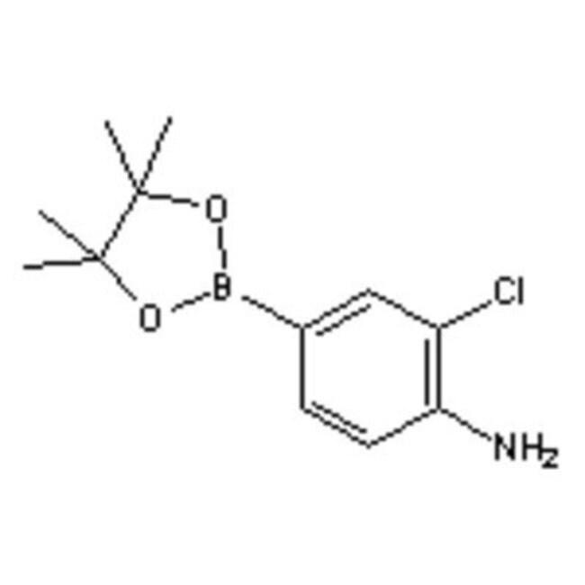 Accela Chembio Inc 4-AMINO-3-CHLOROPHENYLBOR 1G  4-AMINO-3-CHLOROPHENYLBOR