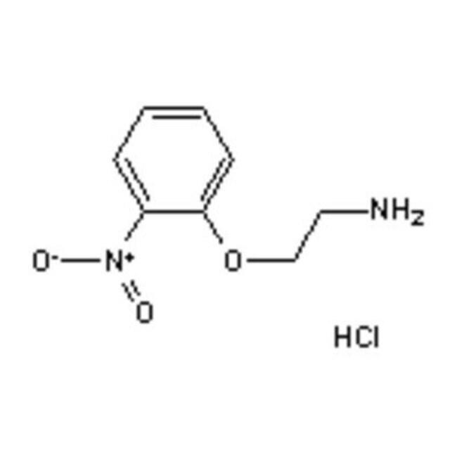 Accela Chembio Inc 2-(2-NITROPHENOXY)ETHYLAM 1G  2-(2-NITROPHENOXY)ETHYLAM