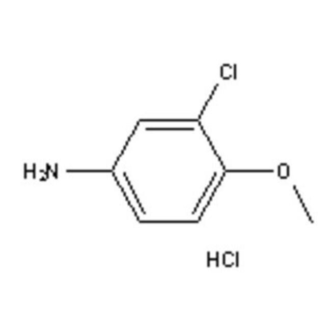 Accela Chembio Inc 3-CHLORO-4-METHOXYANILINE 1G  3-CHLORO-4-METHOXYANILINE