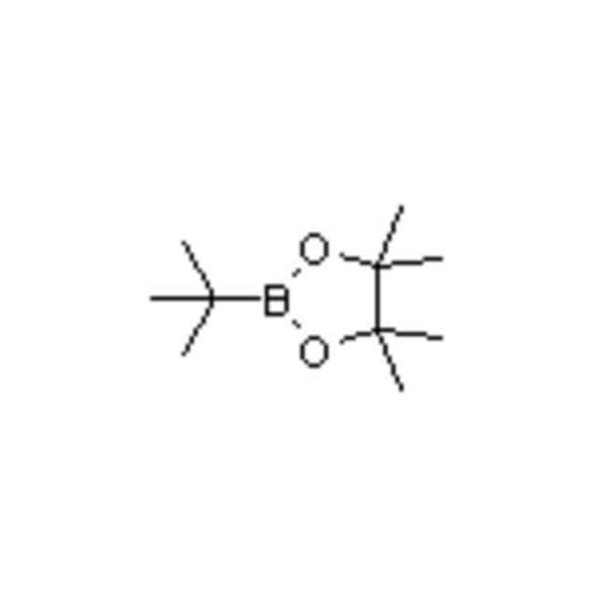 Accela Chembio Inctert-Butylboronic Acid Pinacol Ester, 99810-76-1, MFCD06657801,