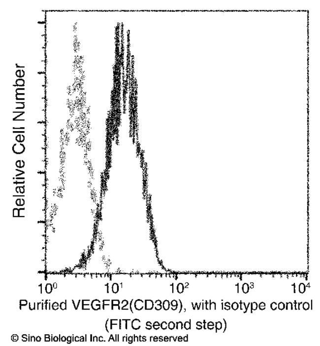 Sino Biological VEGFR2/KDR/Flk-1/CD309 Antibody (APC), Mouse MAb  KDR ANTIBODY