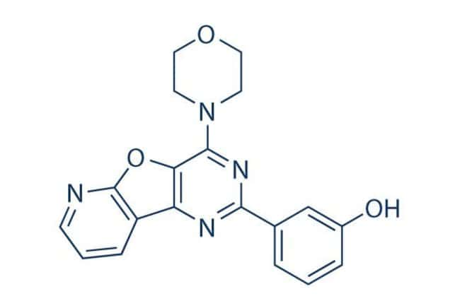 Selleck Chemical LLCPI-103 25mg 371935-74-9