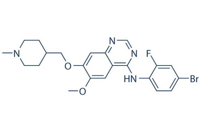 Selleck Chemical LLCVandetanib (ZD6474) 100mg 443913-73-3