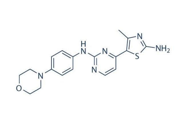 Selleck Chemical LLCCYC116 200mg 693228-63-6