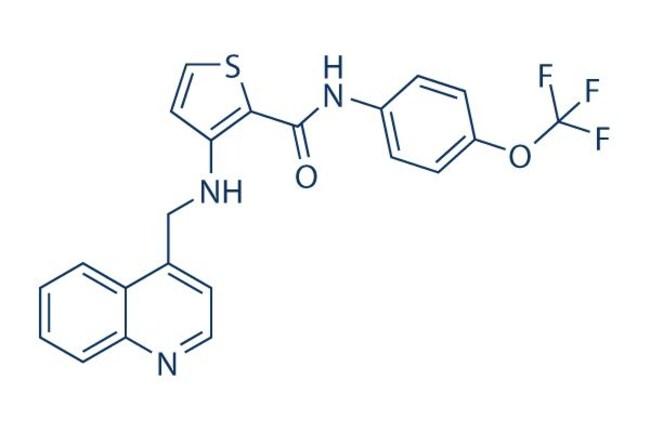 Selleck Chemical LLCOSI-930 50mg 728033-96-3