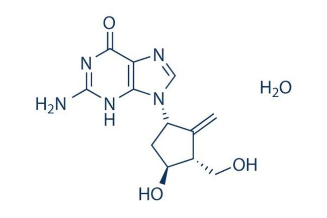 Selleck Chemical LLCEntecavir Hydrate 10mg 209216-23-9
