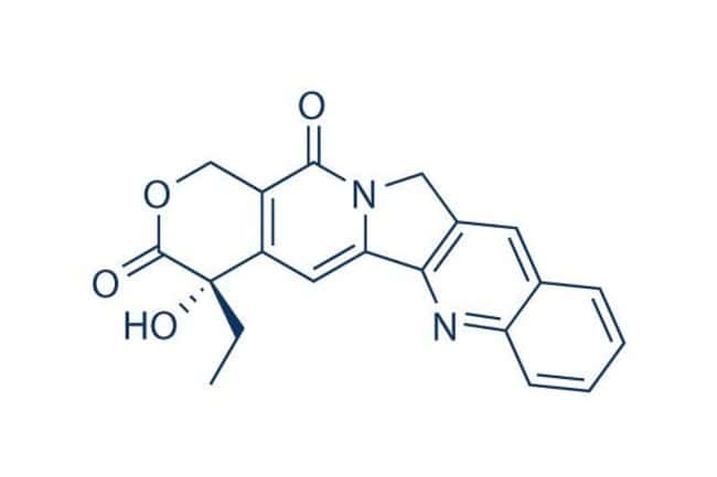 Selleck Chemical LLCCamptothecin 500mg 7689-03-4 NSC-100880, CPT