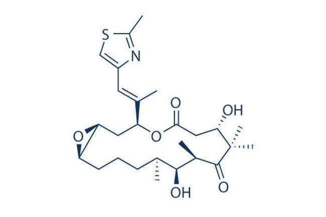 Selleck Chemical LLCEpothilone A 5mg 152044-53-6