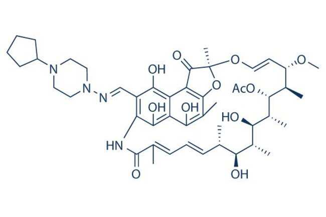 Selleck Chemical LLCRifapentine 25mg 61379-65-5 MDL473