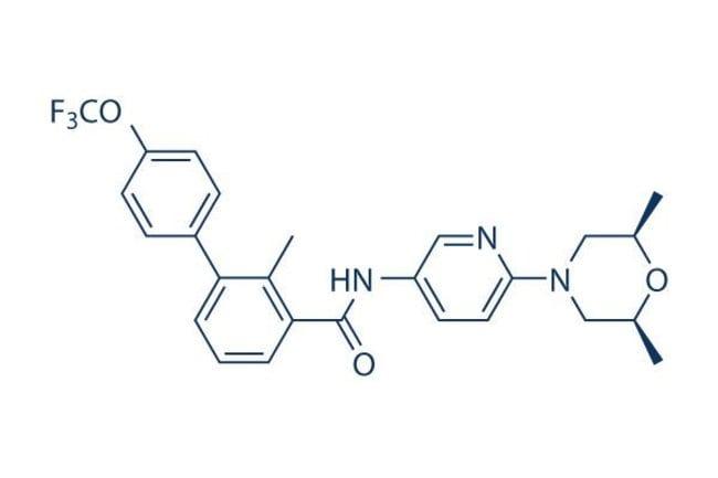 Selleck Chemical LLCSonidegib (NVP-LDE225) 25mg 956697-53-3 Erismodegib