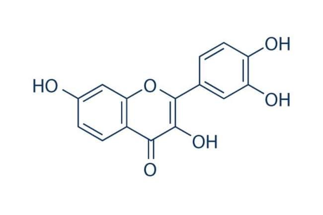 Selleck Chemical LLCFisetin 100mg 528-48-3
