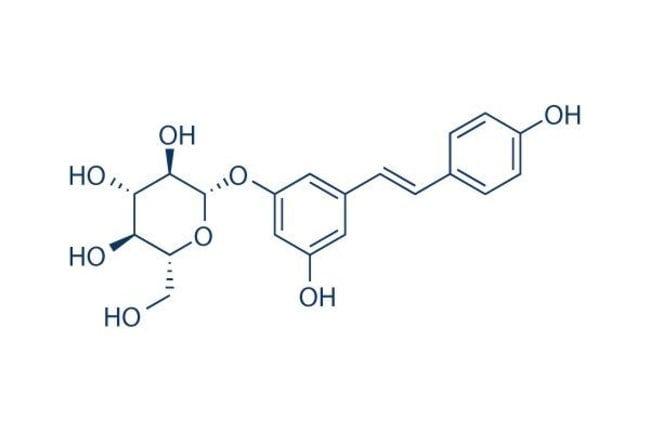 Selleck Chemical LLCPolydatin 200mg 65914-17-2 Piceid