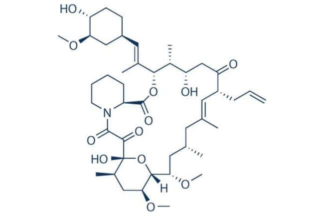 Selleck Chemical LLCTacrolimus (FK506) 100mg 104987-11-3 FR900506, Fujimycin,