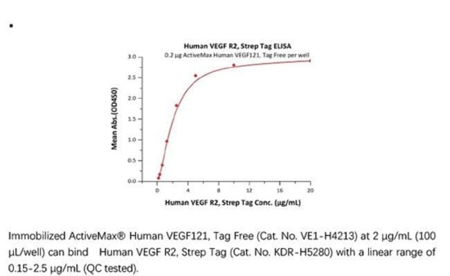 ACROBiosystemsRecombinant Protein;Human VEGF R2 / KDR Protein, Strep Tag;HEK293;25UG;KDR,KDR,CD309,FLK1,VEGFR,VEGFR2,VEGF