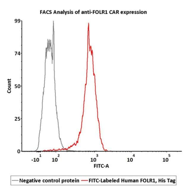 ACROBiosystemsFITC-Labeled Human FOLR1 Protein, His Tag