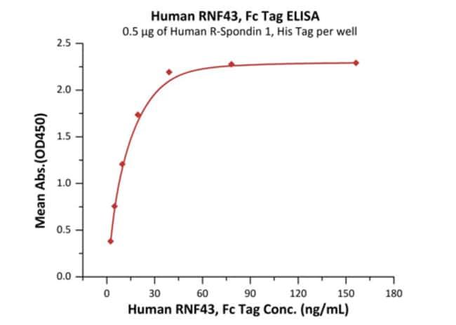 ACROBiosystemsHuman RNF43 Protein, Fc Tag