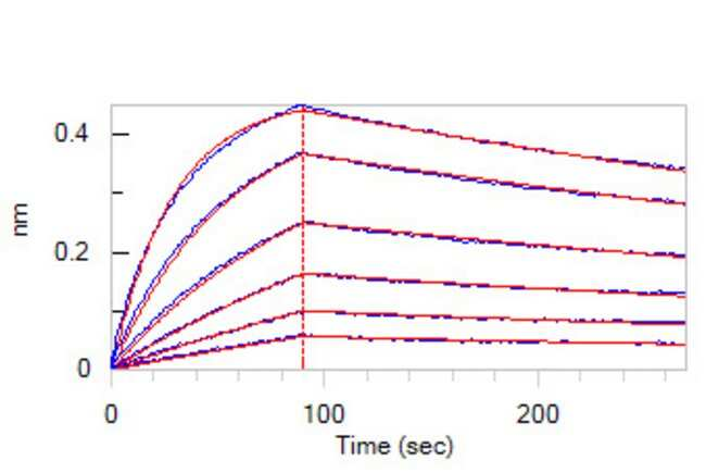 ACROBiosystemsAnti-SARS-CoV-2RBD Potent NeutralizingAntibody, Chimeric