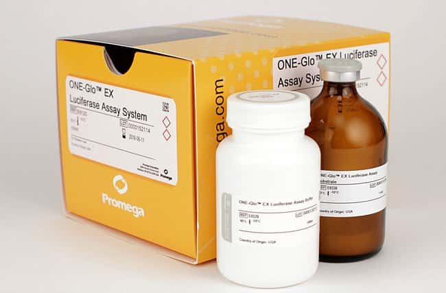 Promega ONE-Glo EX Luciferase Assay System:Life Sciences:Protein Biology