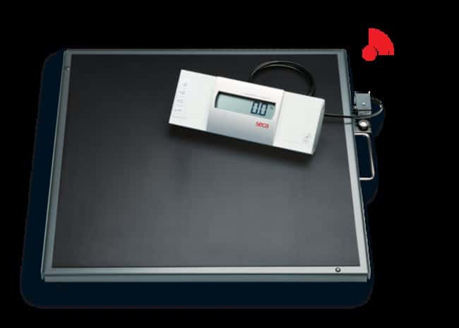 Seca CorpEMR ready platform and bariatric scale