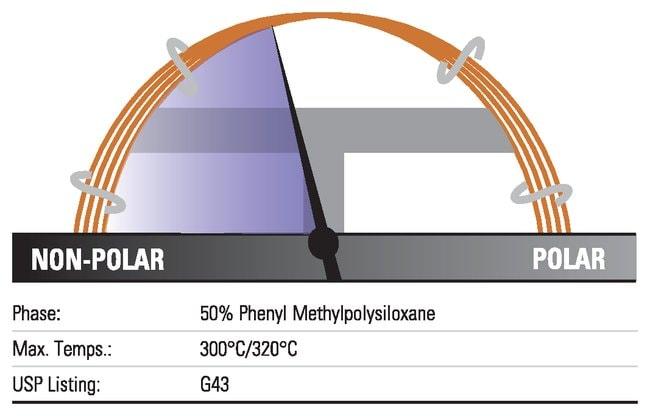 Thermo Scientific TraceGOLD TG-17MS GC Columns:Chromatography:Chromatography