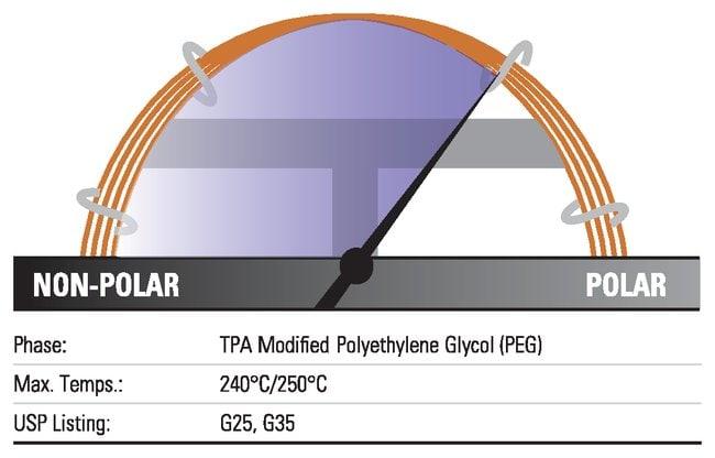 Thermo Scientific TRACE TR-FFAP GC Columns:Chromatography:Chromatography