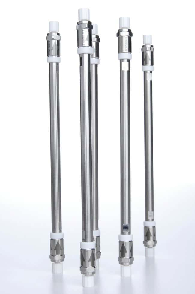 Thermo Scientific Syncronis C18 Columns:Chromatography:Chromatography Columns