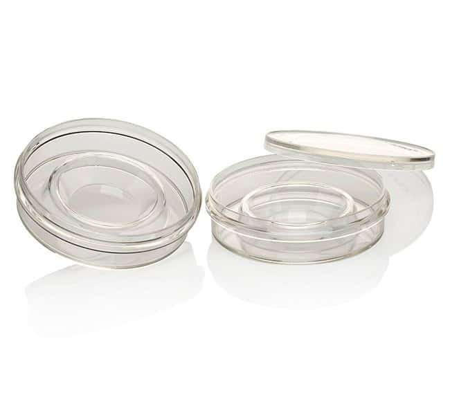 Thermo Scientific Nunc IVF Petri Dishes :Dishes, Plates and Flasks:Dishes