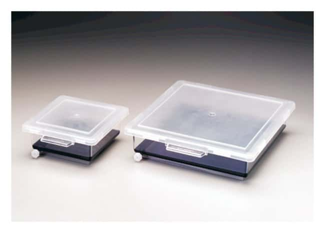 Thermo Scientific™ Nalgene™ Staining Boxes: Electrophoresis System Accessories Electrophoresis Equipment