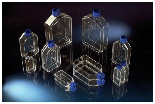 Thermo Scientific&trade;&nbsp;Matraces Nunc™ tratados para cultivo celular con tapones con filtro Nunc Flask 175cm<sup>2</sup>, Filter Cap, Straight Neck, Barcoded 128, 32/Cs Thermo Scientific&trade;&nbsp;Matraces Nunc™ tratados para cultivo celular con tapones con filtro
