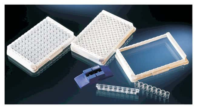 Thermo Scientific Frames and Accessories for Immuno Breakable Modules,
