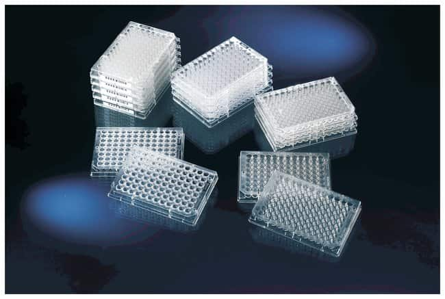 Thermo Scientific Clear Flat-Bottom Immuno Nonsterile 96-Well Plates :Dishes,