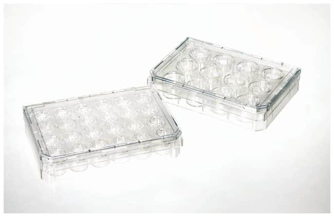 Thermo Scientific™Nunc™ Cell Culture Inserts in Carrier Plate Systems: Cell Dividers, Inserts, Scrapers and Utensils Cell Culture