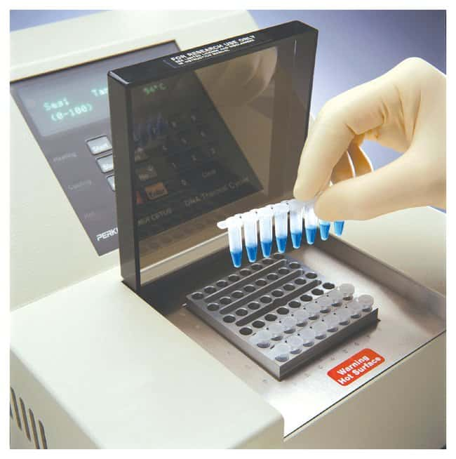 Thermo Scientific PCR 8-Tube Strips:Life Sciences:Molecular Biology Reagents
