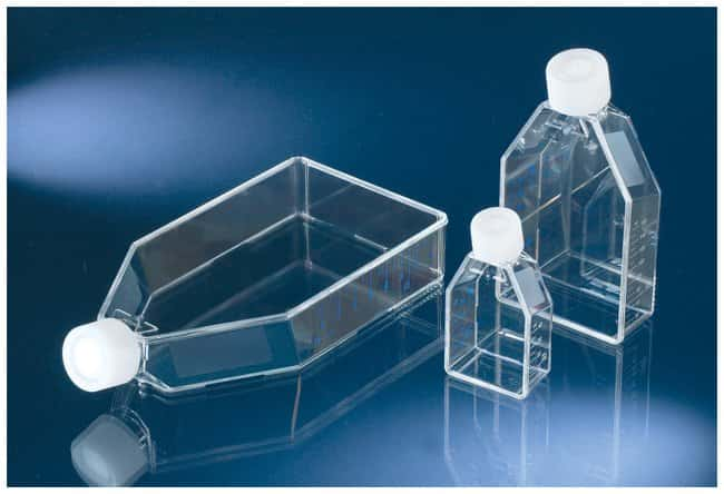 Thermo Scientific™ Nunc™ Non-treated Flasks