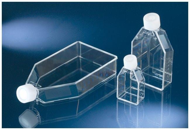 Thermo Scientific™Nunc™ Non-treated Flasks