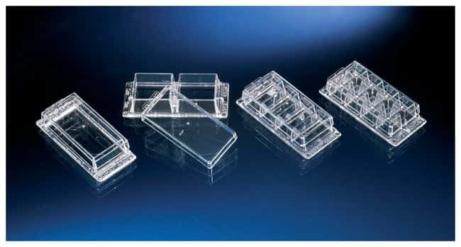 Thermo Scientific Nunc Lab-Tek Chambered Coverglass :BioPharmaceutical