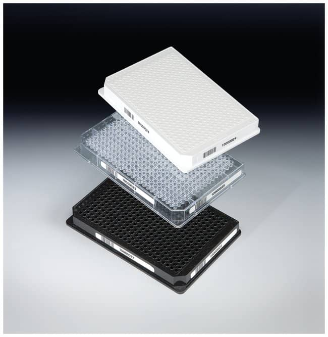 Thermo Scientific Nunc 384 Well ShallowWell Standard Height Clear Plates::