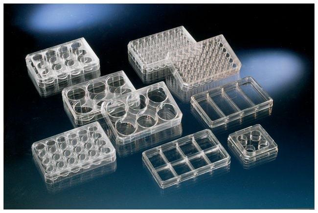 Thermo Scientific™Nunc™ Cell-Culture Treated Multidishes