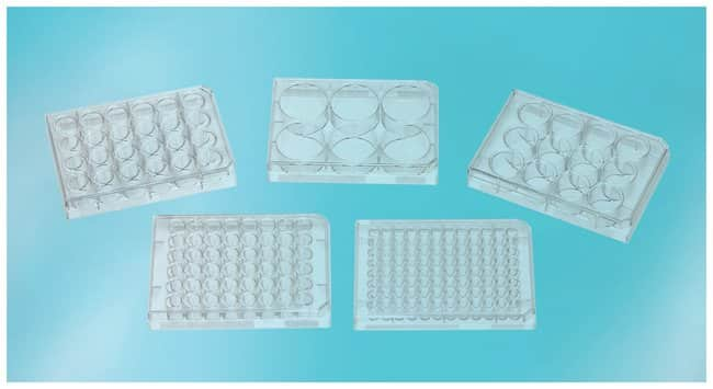 Thermo Scientific BioLite Multidishes and Microwell Plate ::
