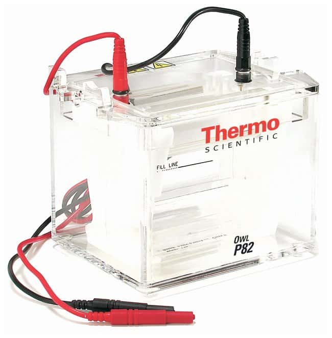 Thermo Scientific Owl P82 Dual Gel System Replacement Parts:Electrophoresis,
